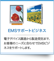 EMS Support Business